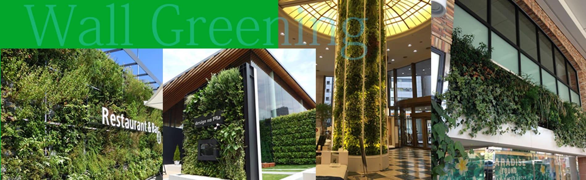 Wall Greening